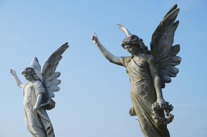 Archangel Robin by ErezMajerantz