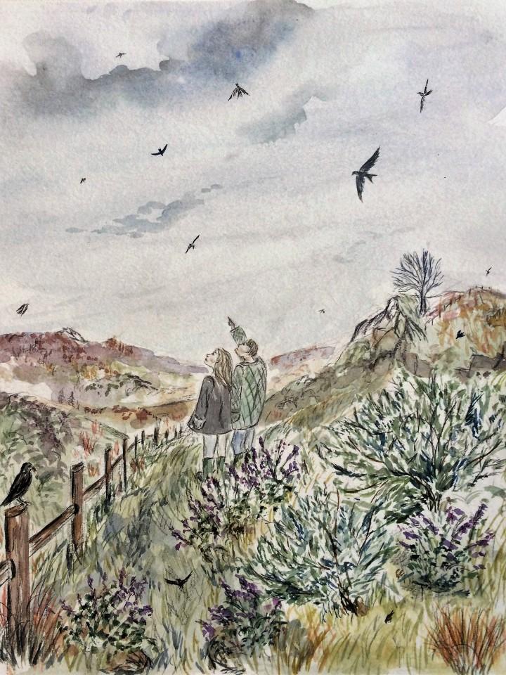 Saddleworth by R.J.Gardham